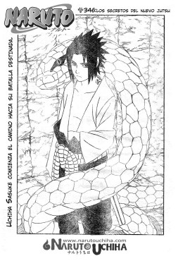 Naruto 346 Cover